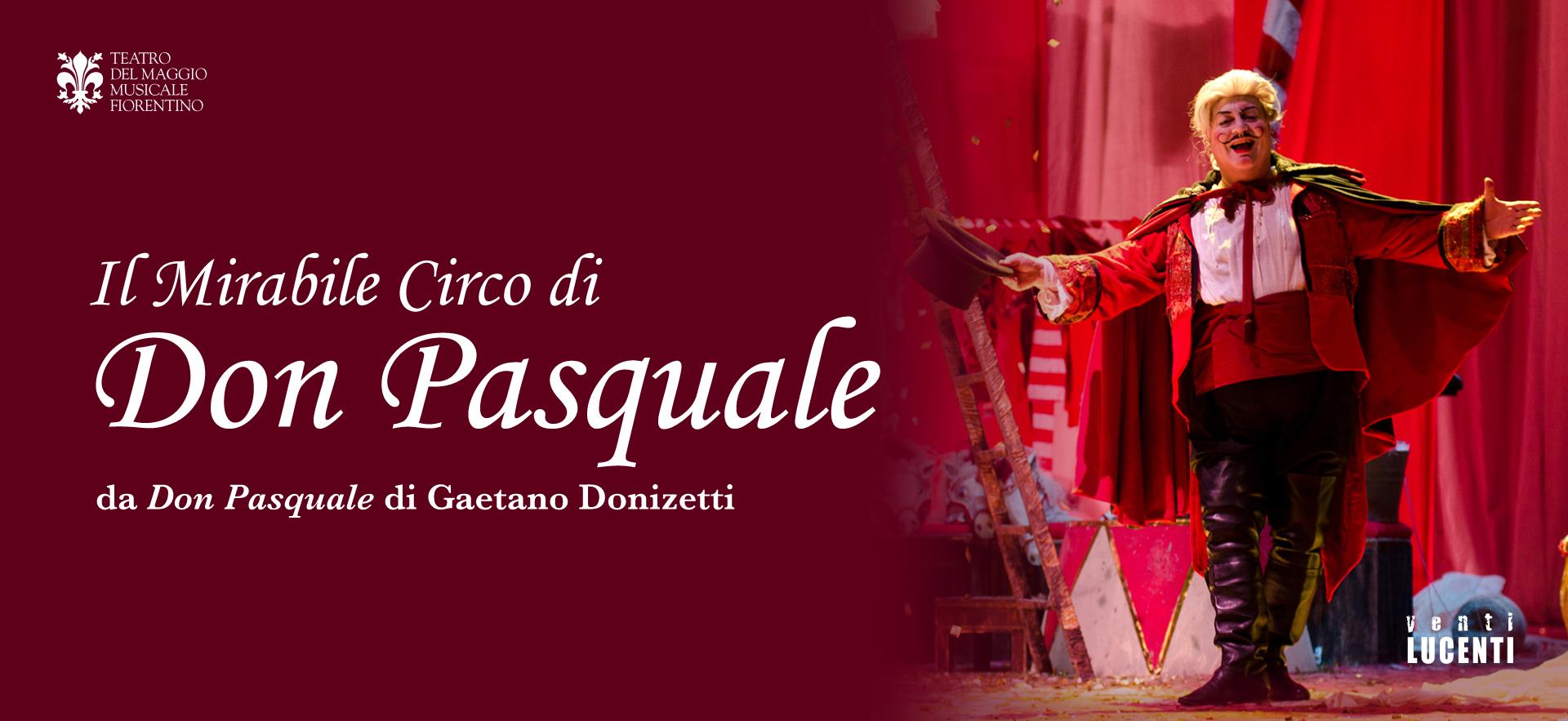 Don Pasquale 2011